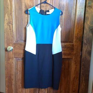 Calvin Klein Figure Flattering Colorblock Dress 10